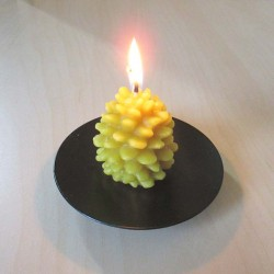 Beeswax candle pine cone